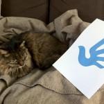 人権ロゴとおはぎ